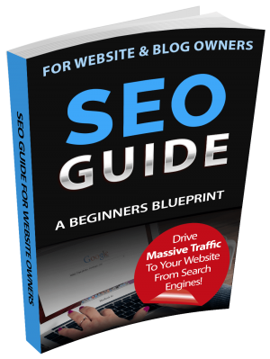 SEO Guide Blue Print For Beginners